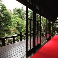 山本亭 japanesegarden shibamata 柴又 冷たいお抹茶 日本庭園 お庭