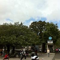 皇居ランニング 竹橋駅