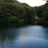 三島野外パーティー 大きな池