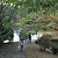 三島野外パーティー 橋