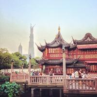 豫园 | Yu Garden 奥には建設中の上海中心大厦...