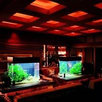 箱根吟遊 (Hakone Ginyu) 夜、水槽のあるラウンジ...