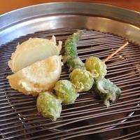 てんぷらと和食 山の上 季節の野菜の天ぷら...