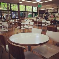 Ueno Zoo 西園食堂 一回り小さいテーブルセット いくつも ueno お父さん 屋外 数