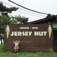 清泉寮ジャージーハット jerseyhat ソフトクリーム softcream 牧場 farm