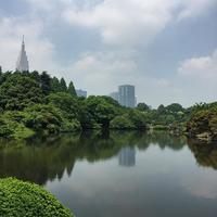 新宿御苑公園 botanicalgarden sinnjyuku そこいら 新宿御苑 静けさ