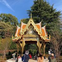 上野動物園 タイ風東屋 playground シロクマ アナウンス サーラータイ ゴリラ 迷子
